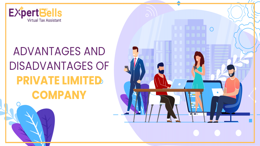 Advantages and Disadvantages of Private Limited Company